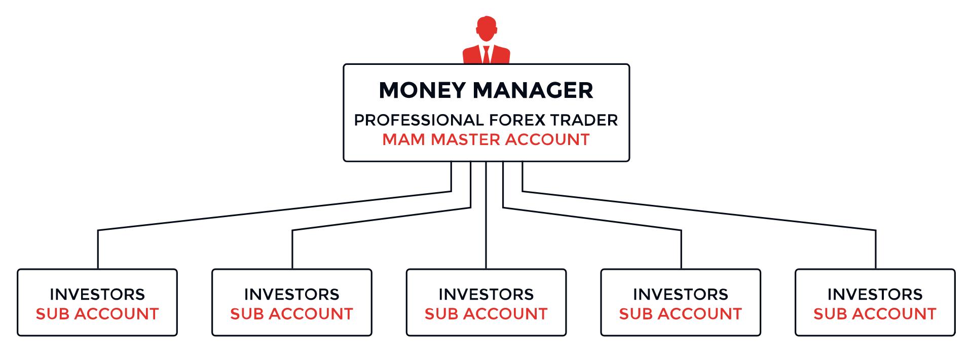 moneymanagerchart